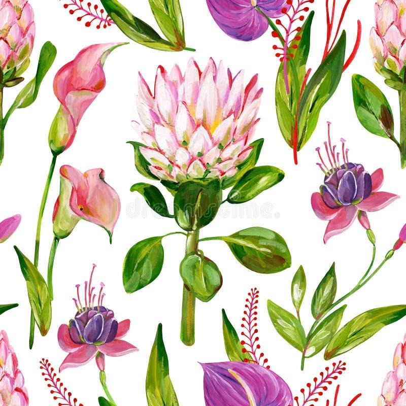 Sömlös exotisk blom- modell för gouache med den protea-, calla-, anthurium- och fuchsiablomman stock illustrationer