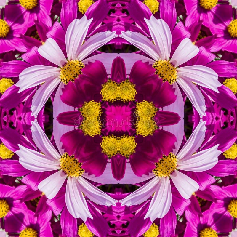Sömlös geometrisk blom- modell av rosa vildblommor arkivbild