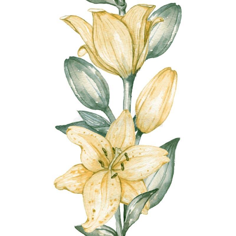 Sömlös gräns av gula liljor vektor illustrationer