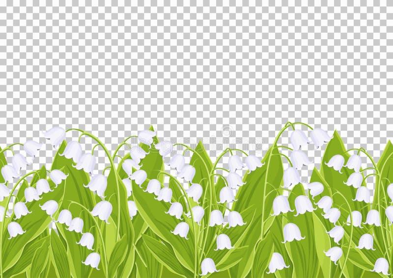Sömlös gräns med den mjuka vårblommaliljekonvaljen, blom- baner, ram, vektorillustration Vit knoppskogblomma royaltyfri illustrationer