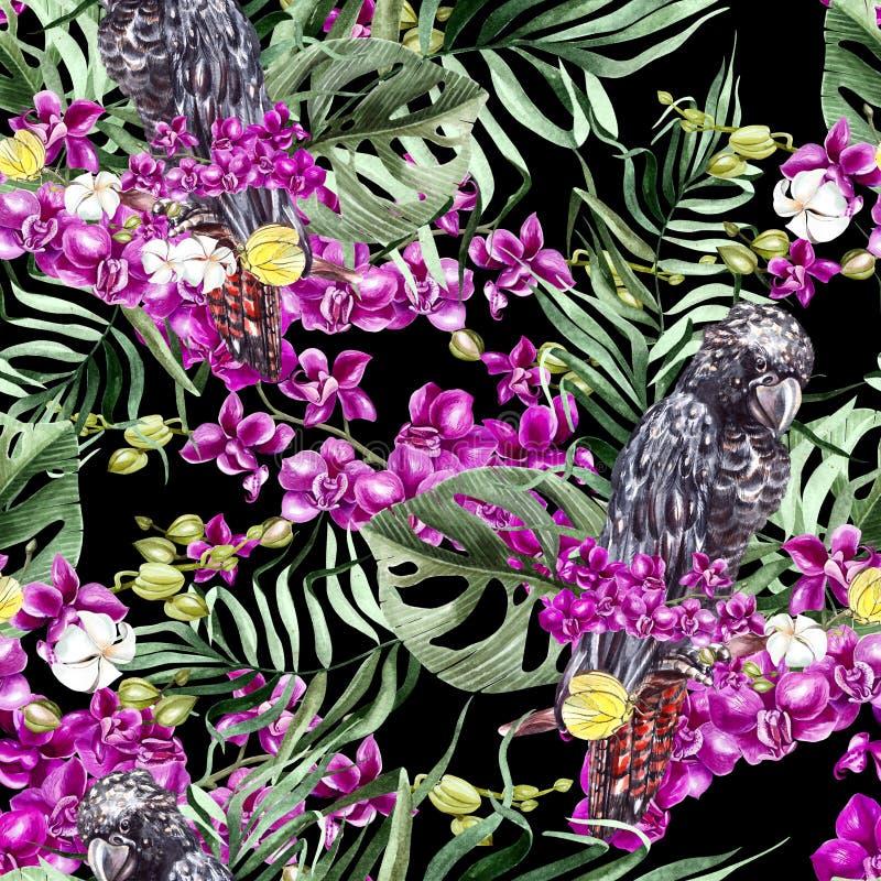 Sömlös härlig vattenfärg, blom- modellbakgrund för tropisk djungel med palmblad, blommaorkidér, svart kakadua royaltyfri illustrationer