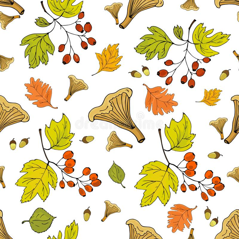 Sömlös höstbakgrund med höstsidor, klungor av hagtornbär och champinjoner vektor illustrationer