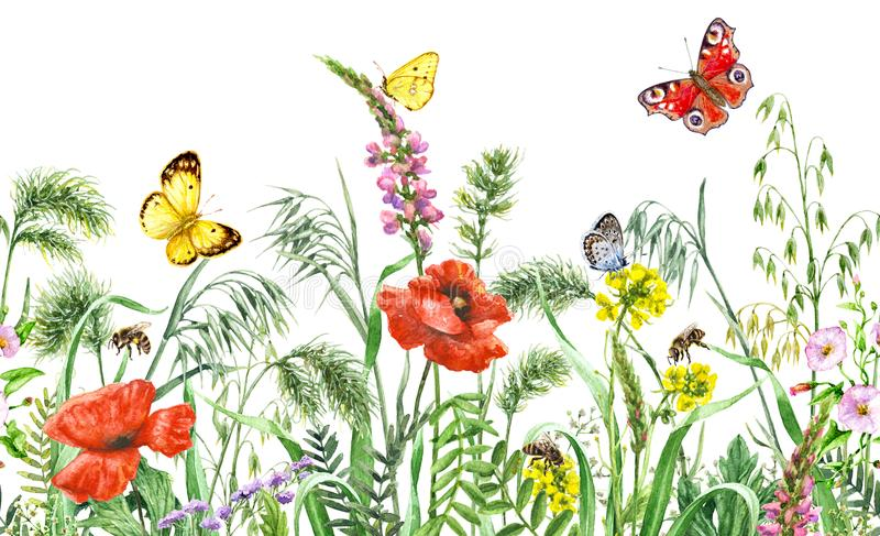 Sömlös horisontalgräns för vildblommor stock illustrationer