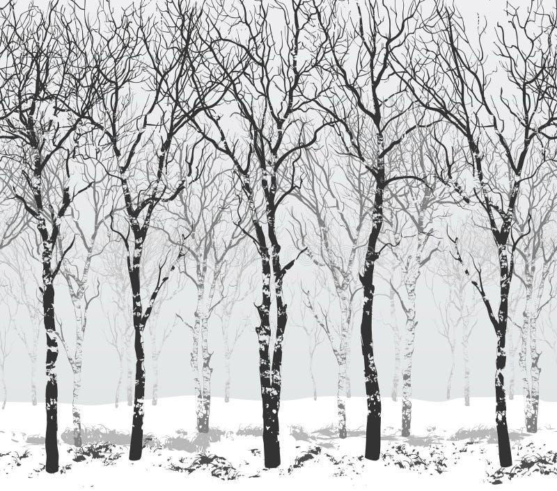 Sömlös horisontellt vektorillustration med träd royaltyfri fotografi