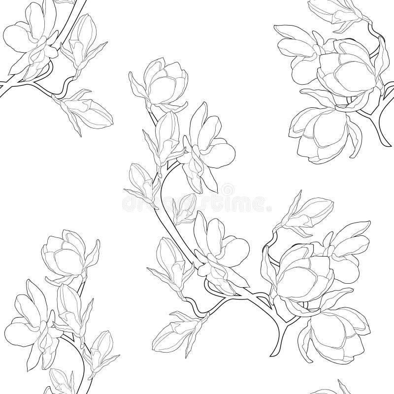 Sömlös illustration för vektor för blomma för modellfärgläggningmagnolia stock illustrationer