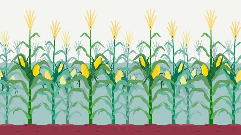 Sömlös isolerad cornfield royaltyfri illustrationer