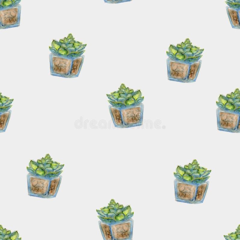 Sömlös kaktus för vattenfärg i den glass krukan arkivbilder