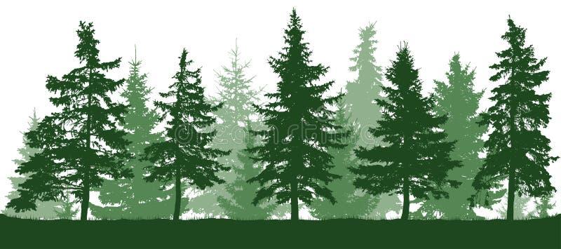Sömlös kontur för skoggranträd stock illustrationer