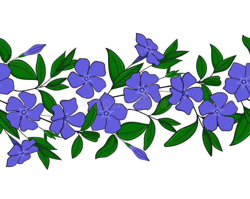 Sömlös modell av den blåa vintergrönan Girland med vincablommor Blom- elegant prydnad Ändlös gräns stock illustrationer