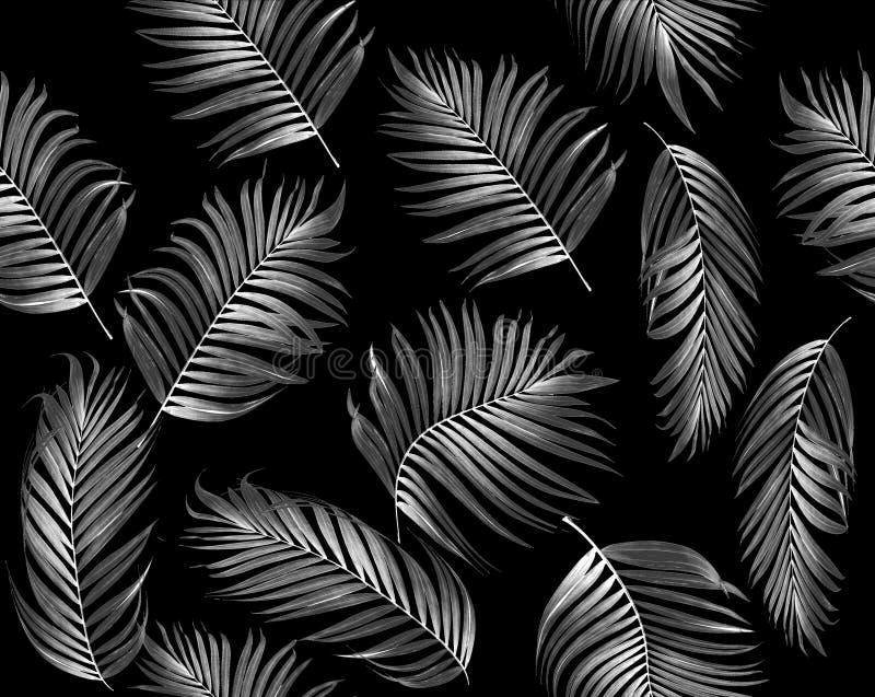 Sömlös modell av den tropiska sidapalmträdet vektor illustrationer