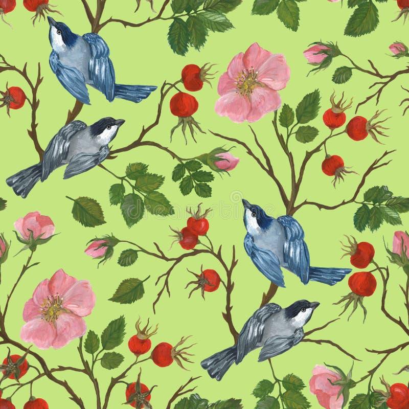 Sömlös modell av fåglar på en filial av en dogrose, illustration vid målarfärger royaltyfri illustrationer