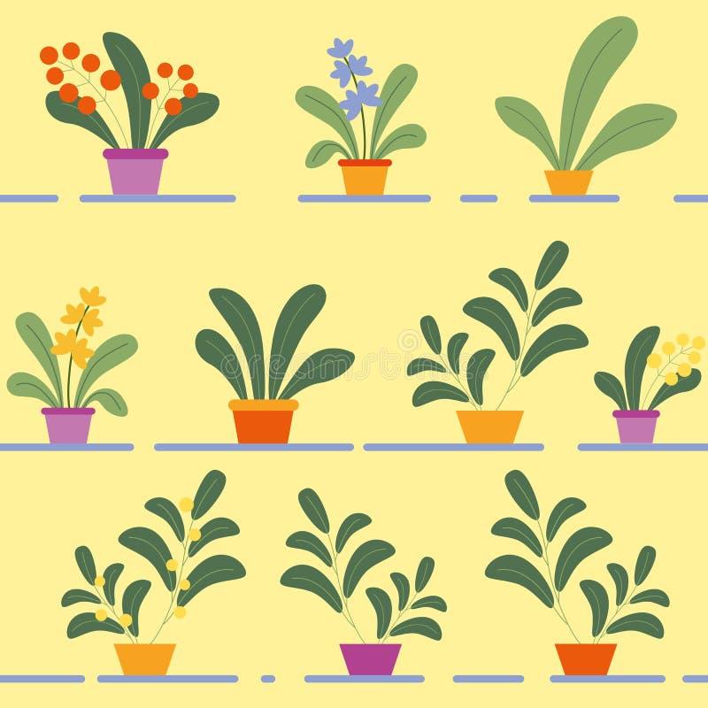 Sömlös modell av inlagda blomma husväxter vektor illustrationer