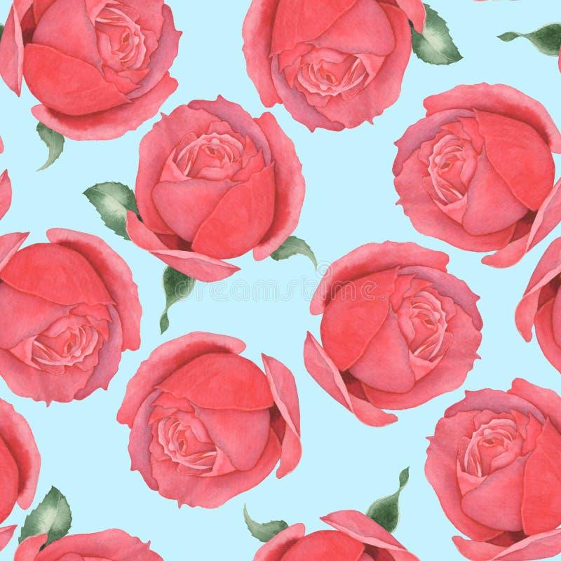 Sömlös modell av röda rosor för flygillustration för näbb dekorativ bild dess paper stycksvalavattenfärg hand-teckning 6 stock illustrationer