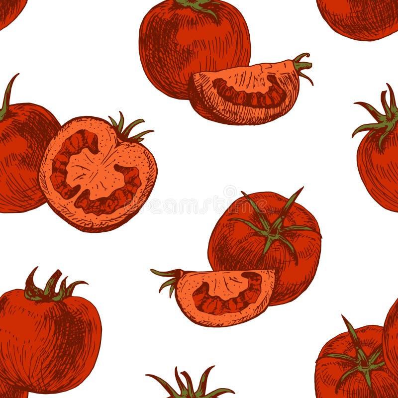 Sömlös modell av tomaten Det kan vara nödvändigt för kapacitet av designarbete stock illustrationer