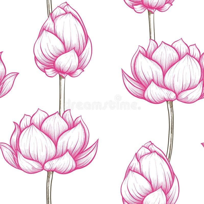 Sömlös modell, bakgrund med lotusblommablomman Botanisk illust stock illustrationer