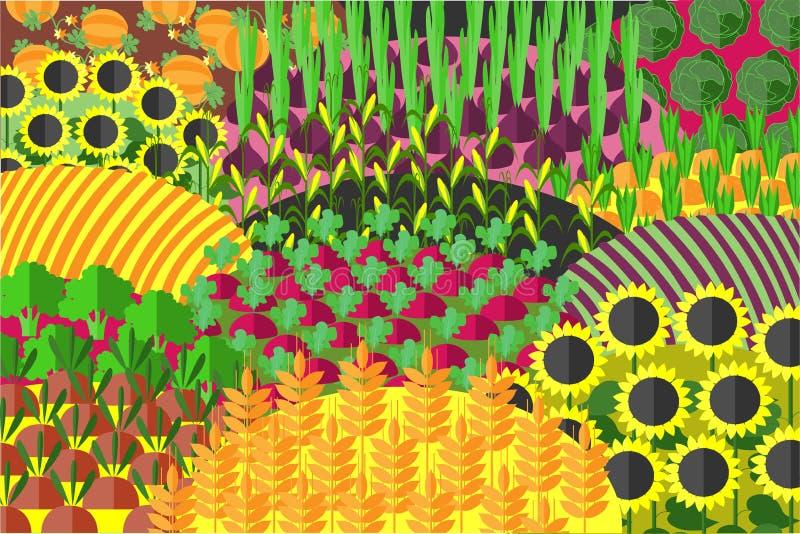 Sömlös modell för överflödande fält livstid för ingredienser för sädes- skörd för bakgrundsbröd sund fortfarande royaltyfri illustrationer