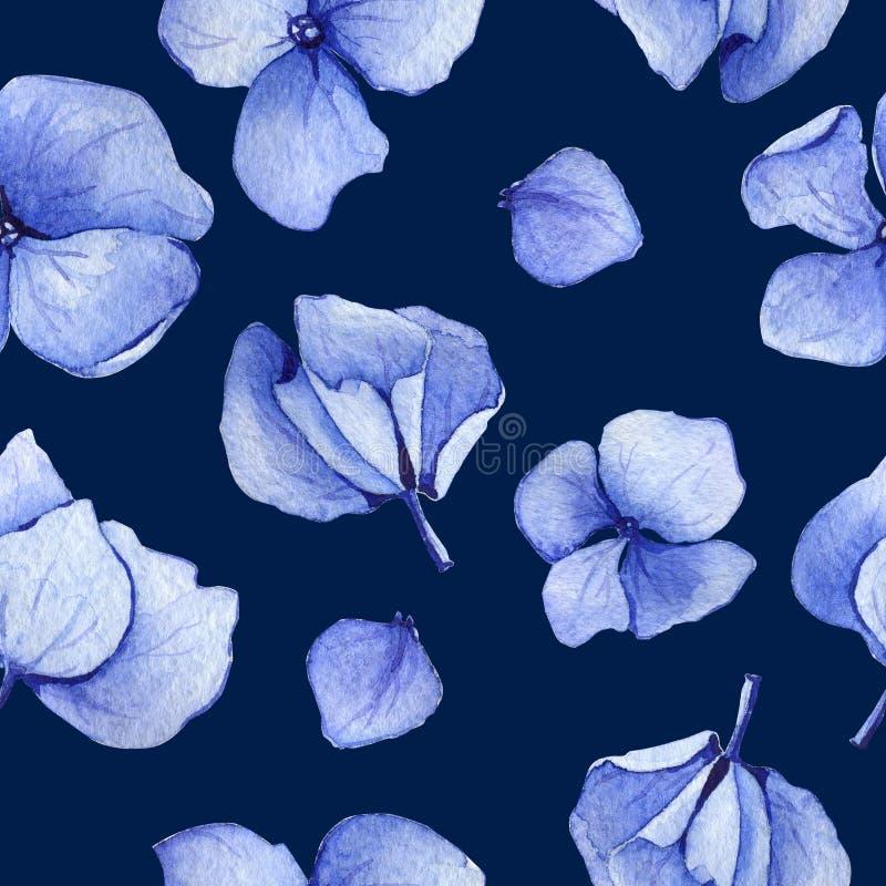 Sömlös modell för blå vanlig hortensiavattenfärg vektor illustrationer