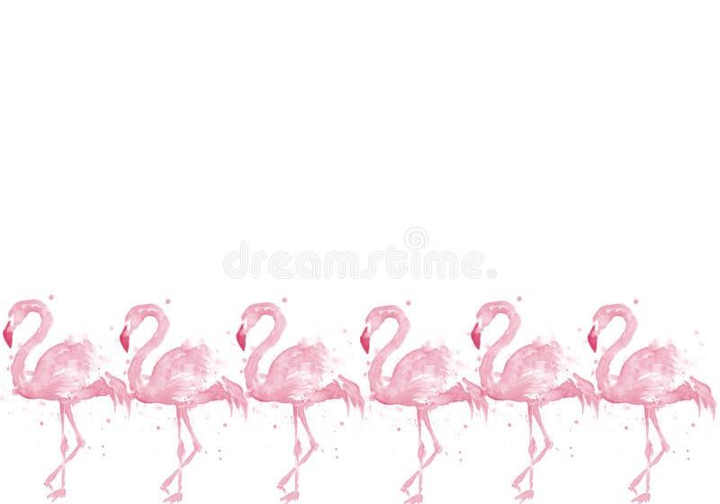 Sömlös modell för flamingo på vit bakgrund exotisk fågel illustrationdesign för tyg och dekor massor av rosa flamingo royaltyfri illustrationer