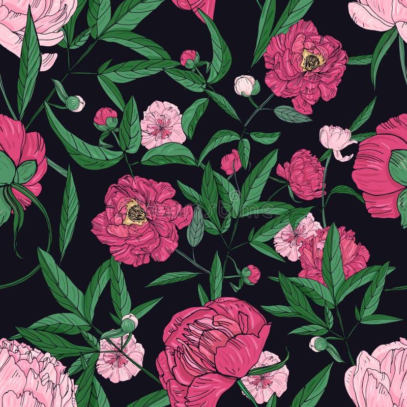 Sömlös modell för härliga pioner Handen drog blomningen blommar, slår ut och sidor vektor för semester för färgrik begreppsillust royaltyfri illustrationer
