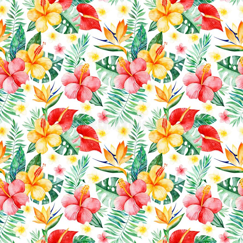 Sömlös modell för Handpainted vattenfärg med mångfärgade blommor, tropiska sidor, filial på vit bakgrund vektor illustrationer