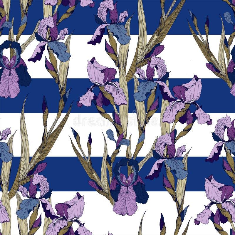 Sömlös modell för irisblommavektor royaltyfri illustrationer