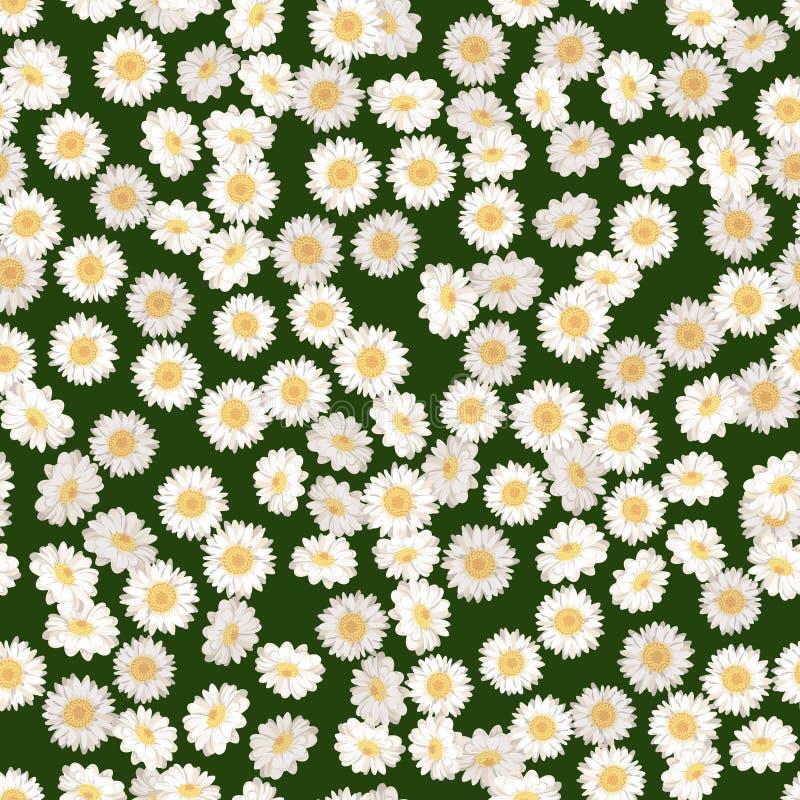 Sömlös modell för kamomill Tusenskönor på grön bakgrund stock illustrationer
