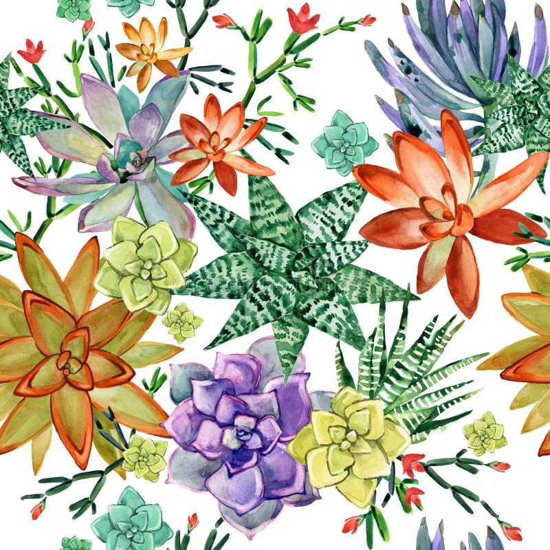 Sömlös modell för suckulenter kaktuns planterar vattenfärgillustrationen royaltyfri illustrationer