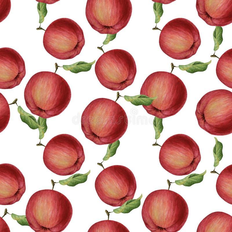 Sömlös modell för vattenfärgäpplen stock illustrationer