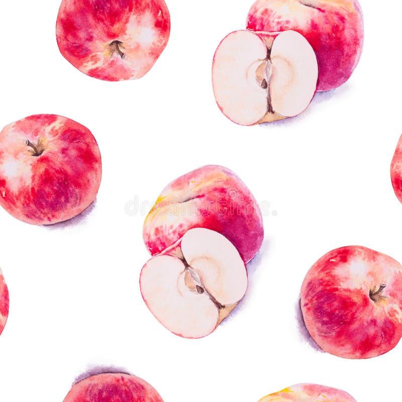 Sömlös modell för vattenfärg av nya äpplen vektor illustrationer