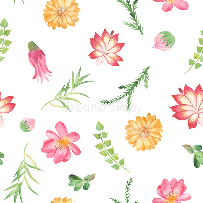 Sömlös modell för vattenfärg med blommor, suckulenter, kakturs vektor illustrationer