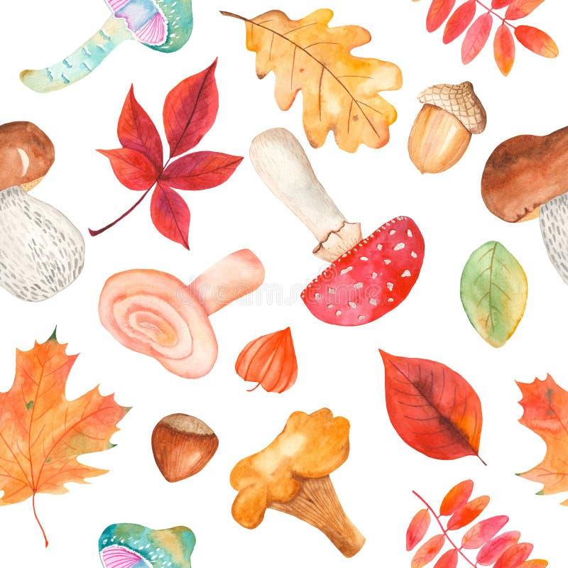 Sömlös modell för vattenfärg med champinjoner, fizalis, ekollonen, hasselnötter och färgrika sidor stock illustrationer