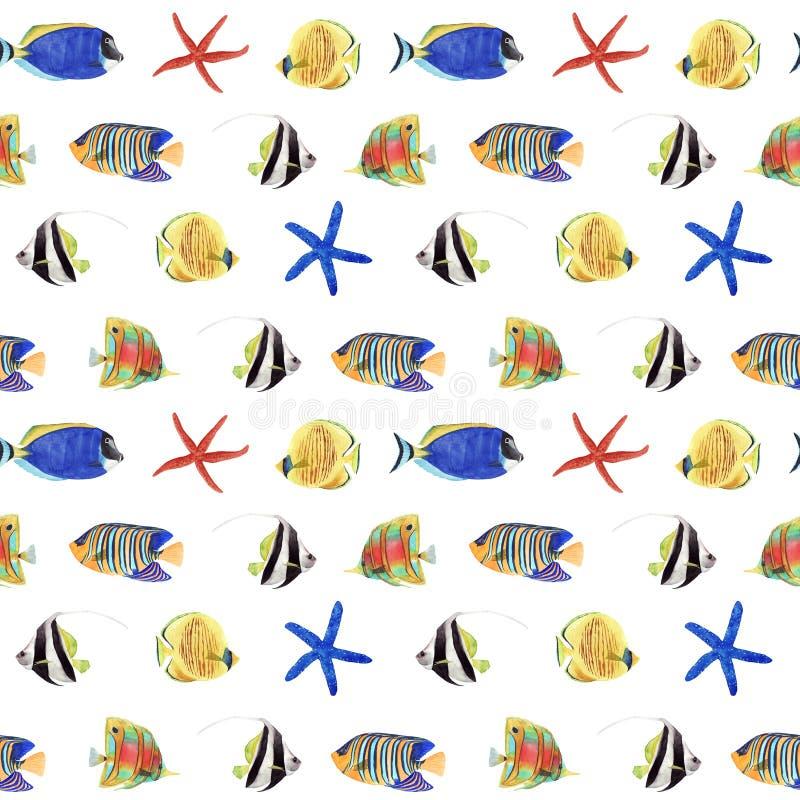 Sömlös modell för vattenfärg med den färgrika tropiska fisken och sjöstjärnan på vit bakgrund royaltyfri illustrationer