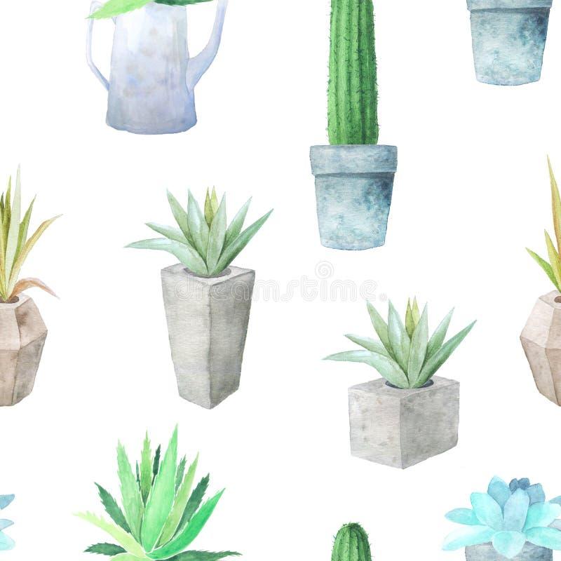 Sömlös modell för vattenfärg med olika suckulenter stock illustrationer