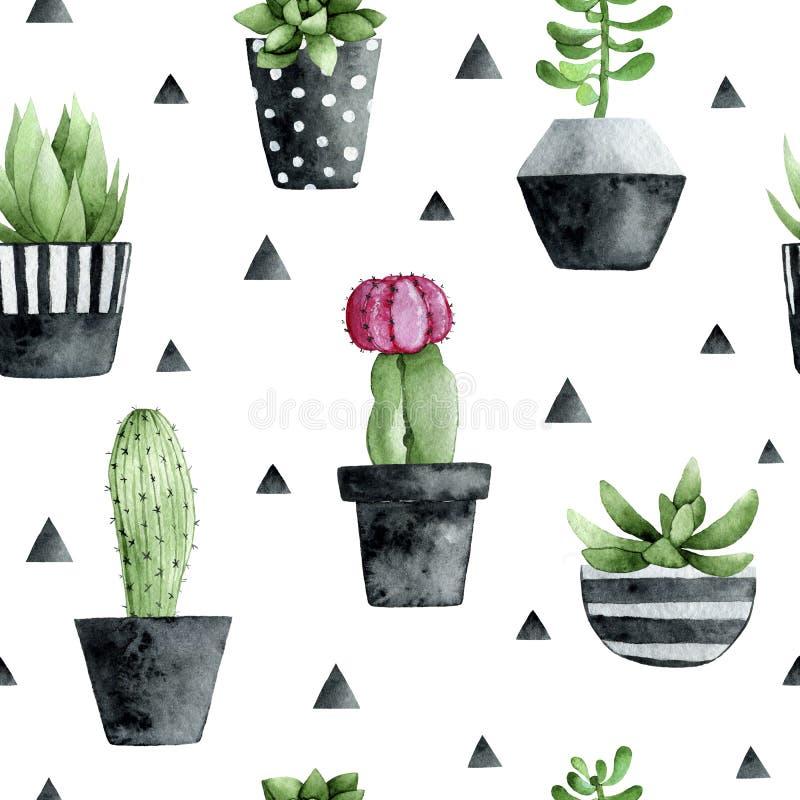 Sömlös modell för vattenfärg med suckulenter och kaktuns på vit bakgrund vektor illustrationer