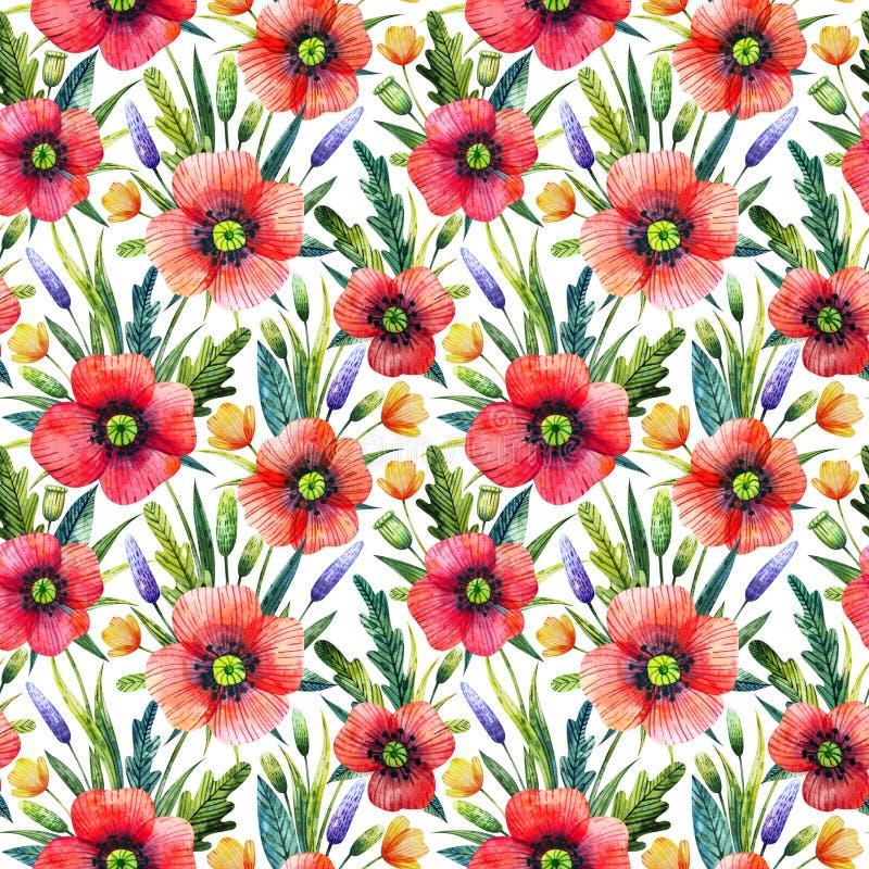 Sömlös modell för vattenfärg med vallmo vektor för detaljerad teckning för bakgrund blom- Hand drog sommarblommor stock illustrationer