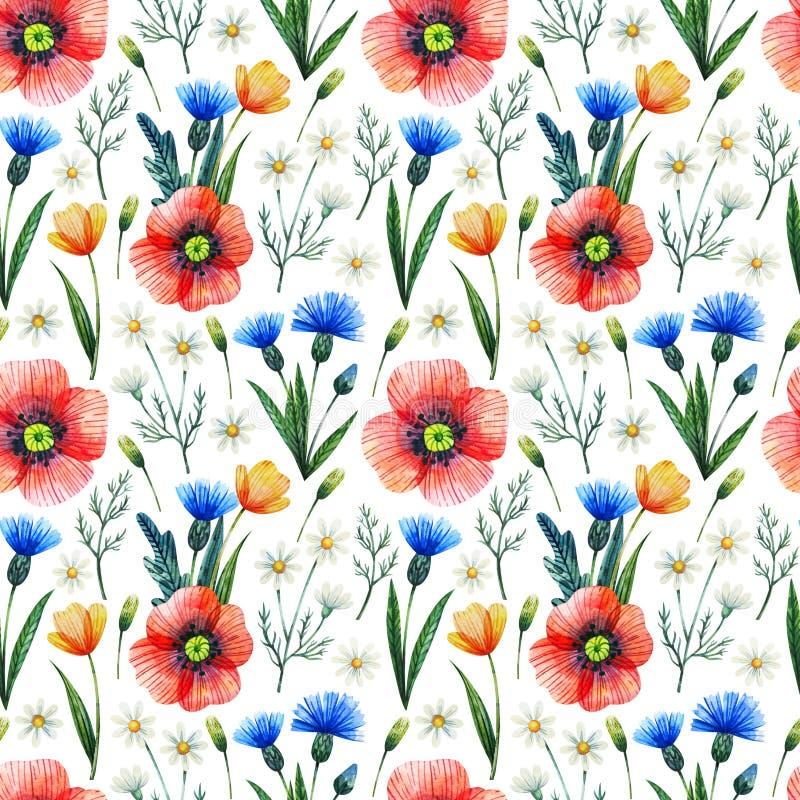 Sömlös modell för vattenfärg med vallmo vektor för detaljerad teckning för bakgrund blom- Hand drog sommarblommor royaltyfri illustrationer