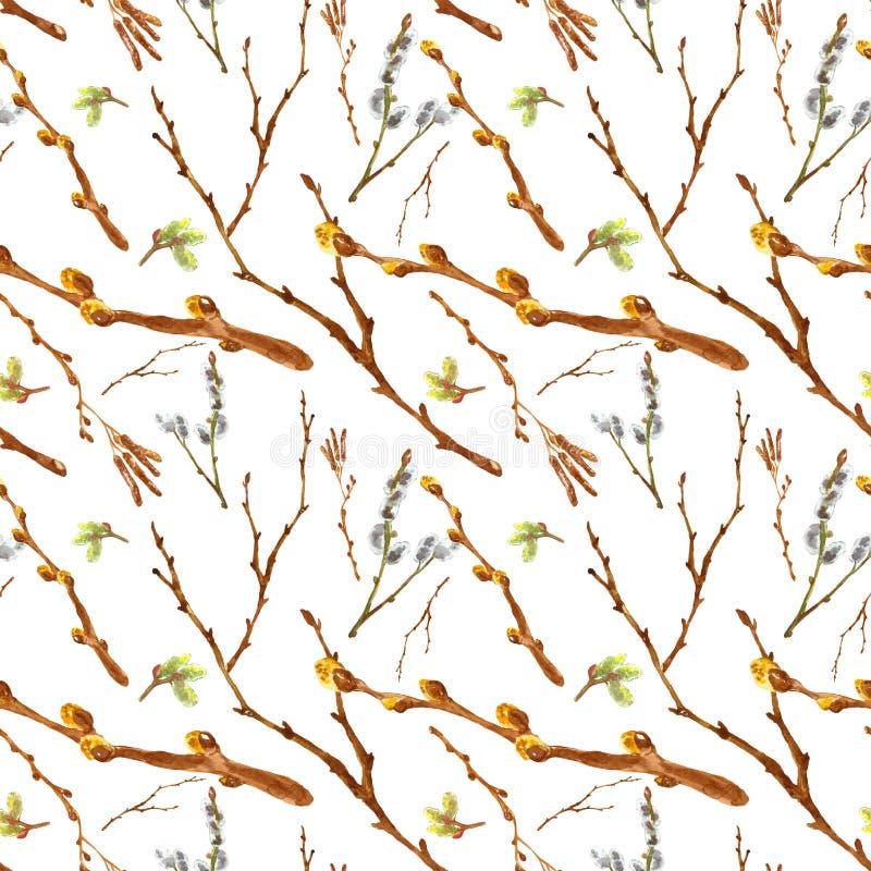 Sömlös modell för vattenfärgvår med ris för pussypil och trädfilialer som isoleras på vit bakgrund royaltyfri bild