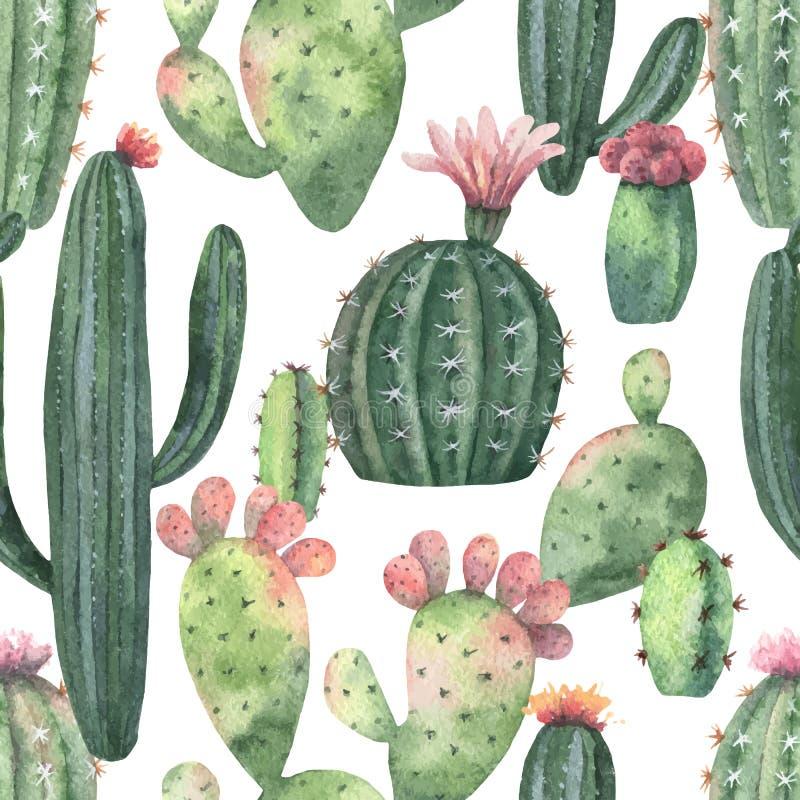 Sömlös modell för vattenfärgvektor av kakturs och suckulentväxter som isoleras på vit bakgrund stock illustrationer