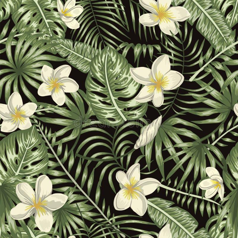 Sömlös modell för vektor av gröna tropiska sidor med vita plumeriablommor på svart bakgrund royaltyfri illustrationer