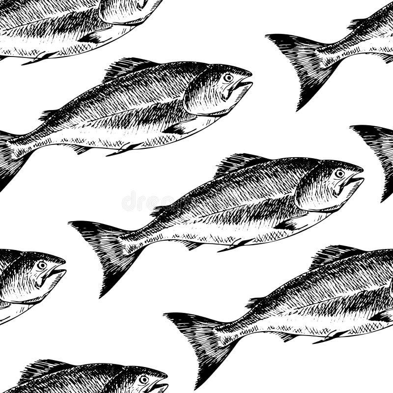 Sömlös modell för vektor av skaldjur isolerad lax Hand drog inristade symboler Läckra matmenyobjekt stock illustrationer