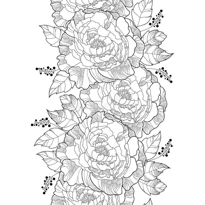 Sömlös modell för vektor med översiktspionblomman och det utsmyckade bladet i svart på den vita bakgrunden Blom- vertikal piongrä royaltyfri illustrationer