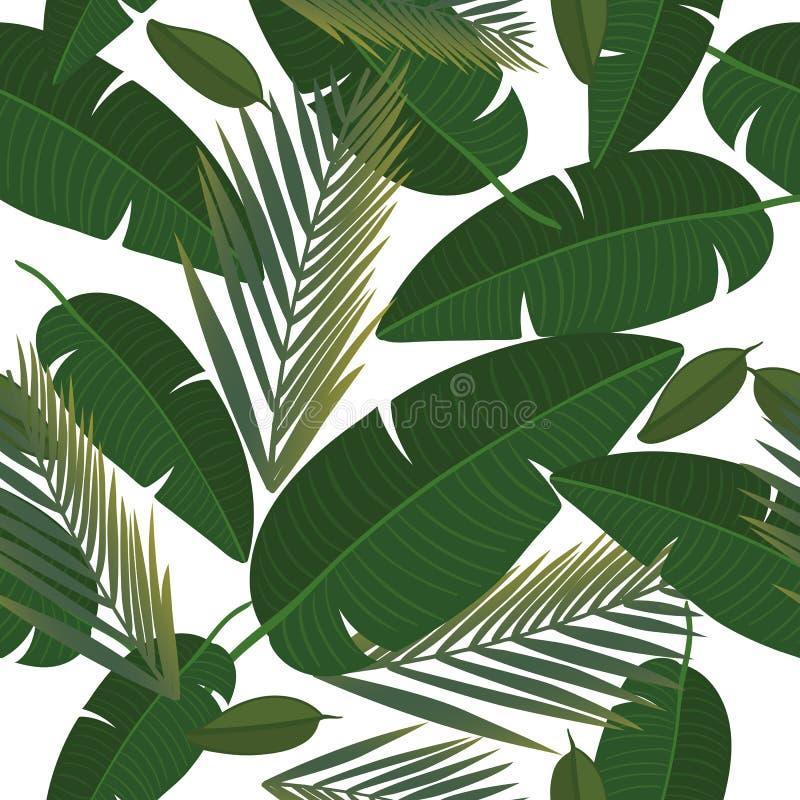 Sömlös modell för vektor med och tropiska sidor Exotisk botanisk bakgrundsdesign för skönhetsmedel, brunnsort, textil vektor illustrationer