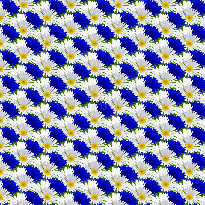 Sömlös modell med blommakamomill royaltyfri illustrationer