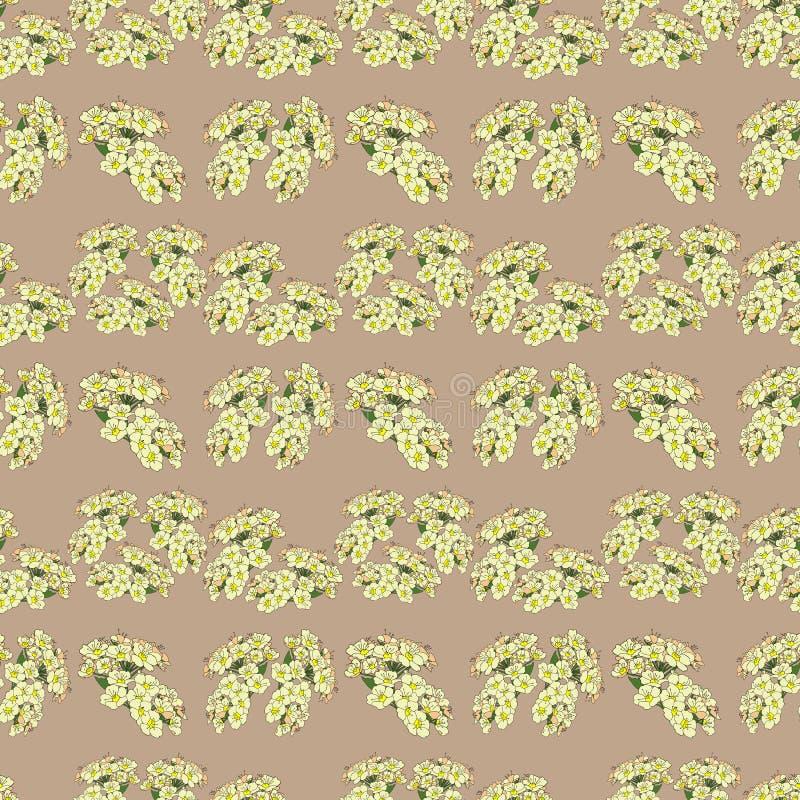 Sömlös modell med borstar för vita blommor Dekorativ rasterillustration stock illustrationer
