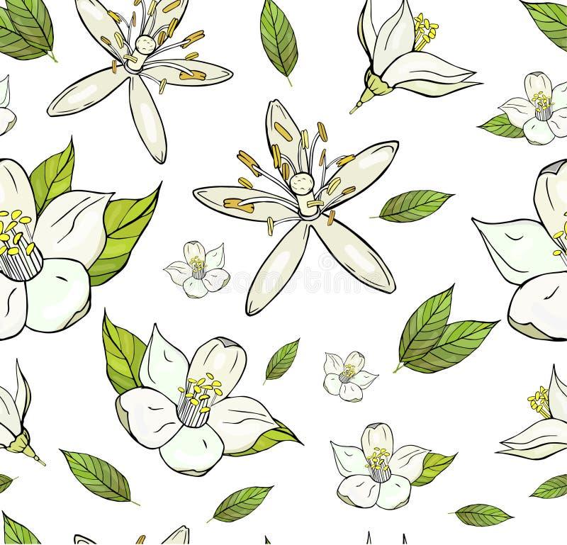 Sömlös modell med citronblommor och blad royaltyfri illustrationer