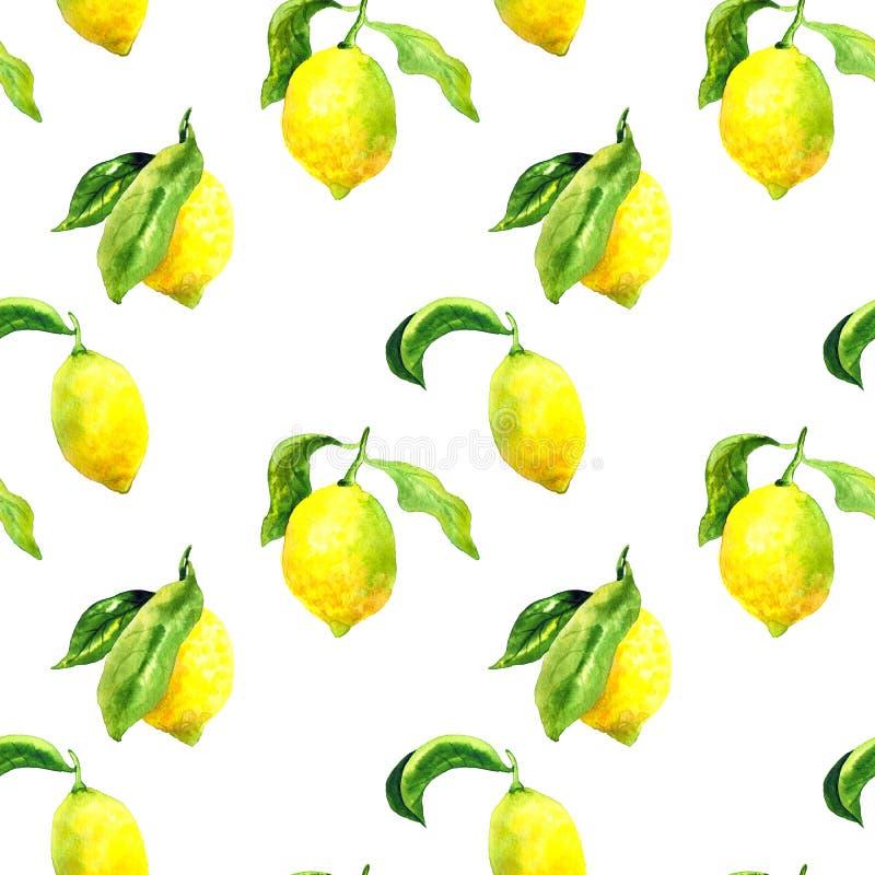 Sömlös modell med citroner och sidor Hand dragen vattenf?rgillustration Textur f?r trycket, tyg, textil, tapet royaltyfri illustrationer