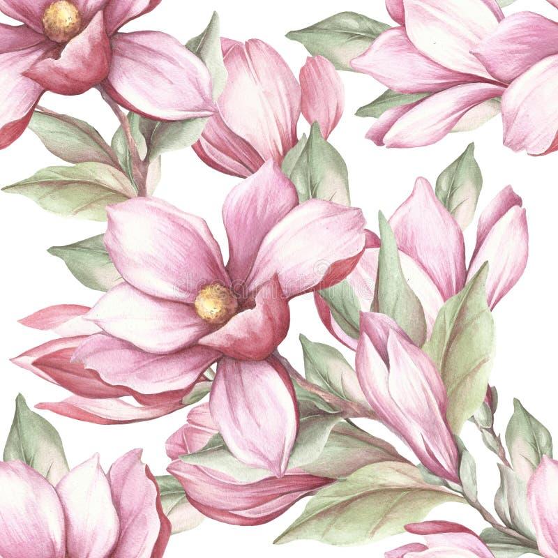 Sömlös modell med den blommande magnolian för flygillustration för näbb dekorativ bild dess paper stycksvalavattenfärg stock illustrationer