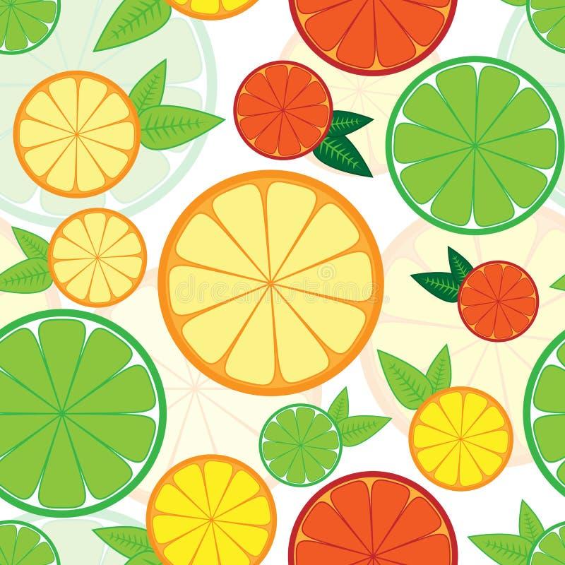 Sömlös modell med den färgrika citruns vektor illustrationer