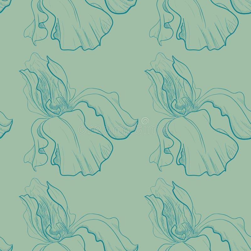 Sömlös modell med en hand dragen iris vektor illustrationer
