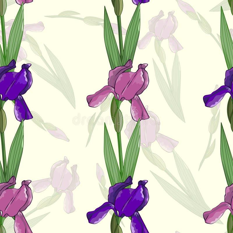 Sömlös modell med irisblommor royaltyfri illustrationer